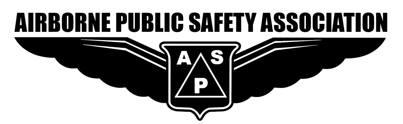 APSA Wings only transparent